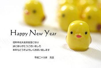 bird_y_56.jpg